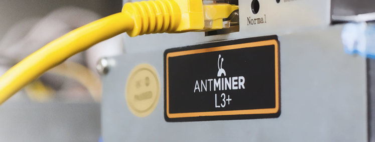 Antminer L3+ Miner Hosting